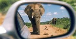 Tour Sudafrica Meraviglioso