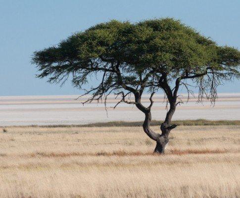 Panorami della Namibia
