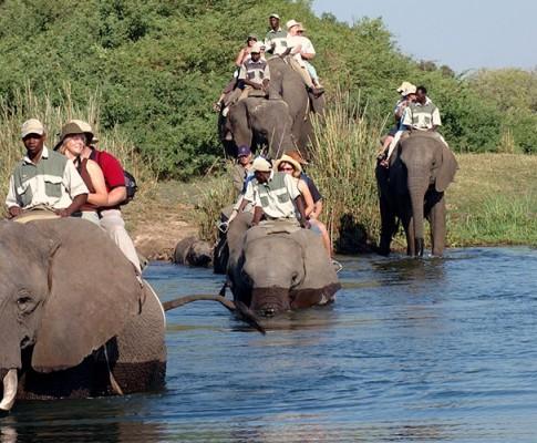 Sudafrica & Cascate Vittoria