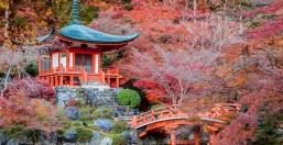 Viaggio di Nozze Giappone & Maldive