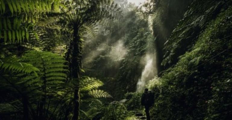 Viaggio in Rwanda: natura, avventura, esplorazione