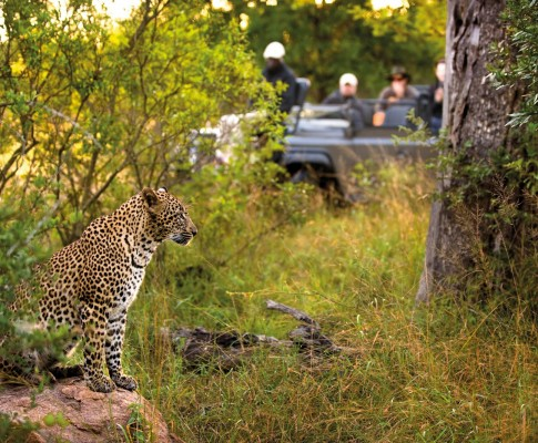 Tour Sudafrica Cascate Vittoria & Mauritius